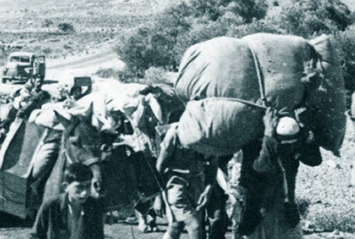 Nakba, 1948 - Archives