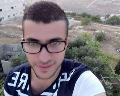 Malik al-Qadi - Ma'anNews