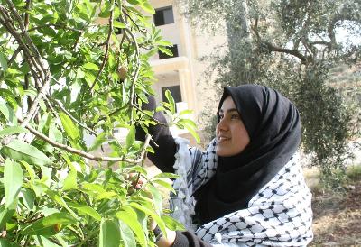 Photo : Shatha Hammad/Al Jazeera