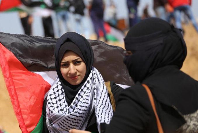Photo : MEM/Mohammed Asad