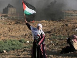 Photo: Mohammed Zaanoun / ActiveStills